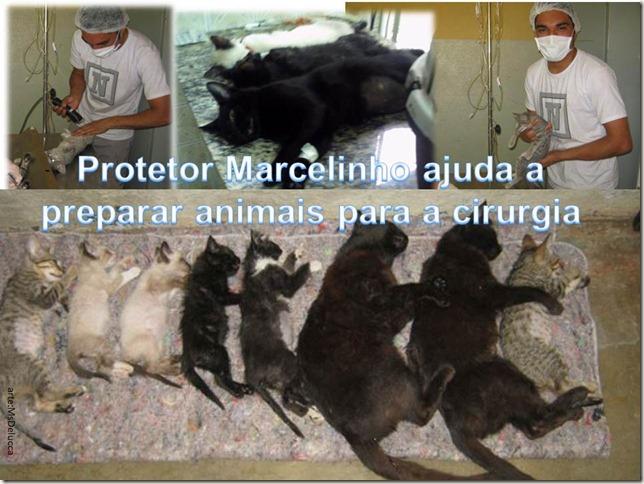 marcelinho_protetor2