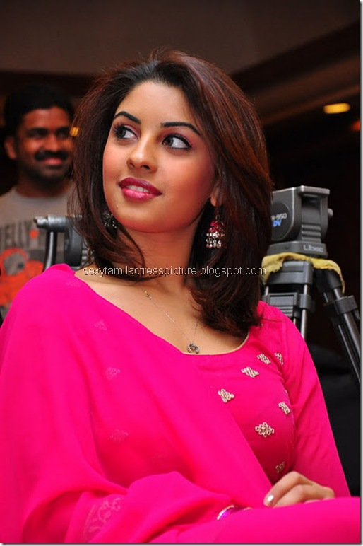 beautiful_&_Hot Richa_Gangopadhyay_stills_03