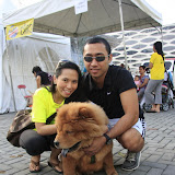 Pet Express Doggie Run 2012 Philippines. Jpg (265).JPG