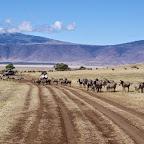 Ngorongoro-Krater., Piste durch den Krater © Foto: Judith Nasse | Outback Africa Erlebnisreisen