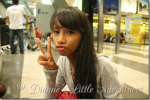 Dianne's Little Adventures