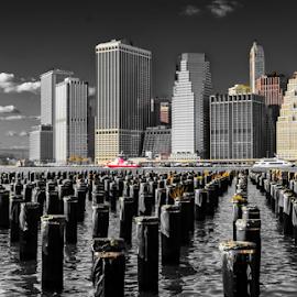 NYC by Jeanne Knoch - City,  Street & Park  Vistas (  )