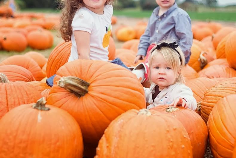 pumpkin_patch_austin