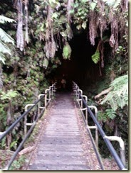 20150118_Thurston Lava Tube (Small)