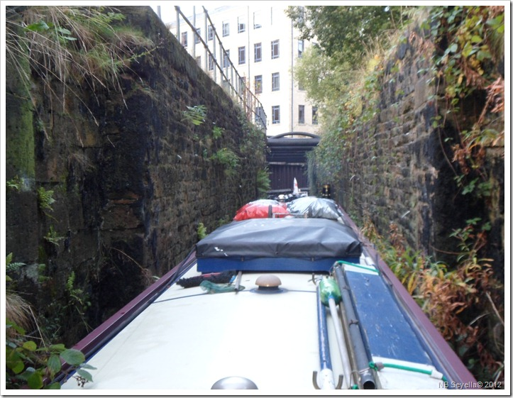 SAM_3818 Bates Tunnel