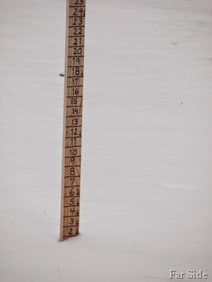 December 15 2 inches of snow