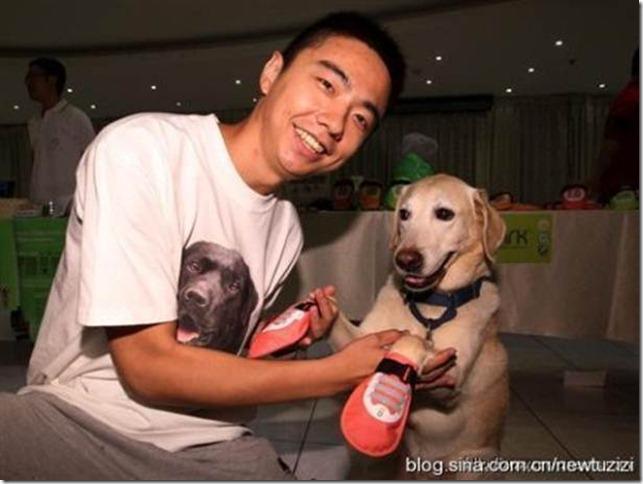 呵護導盲犬的腳 寵物氣墊鞋