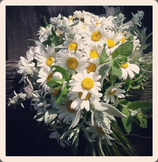 leftovers 9354_508945449153870_1455823935_n white antler flowers
