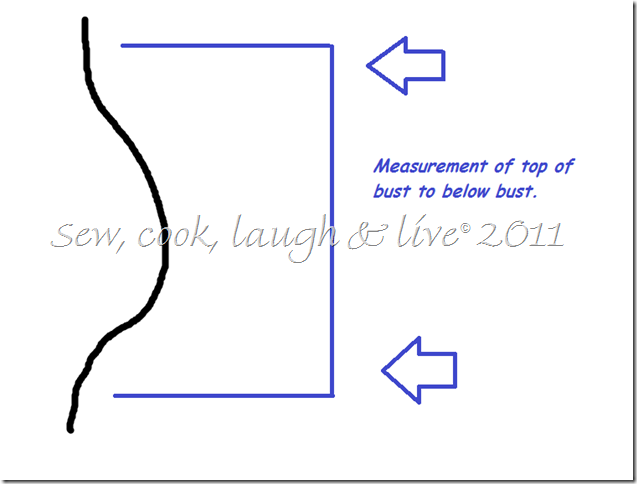 bust measurement