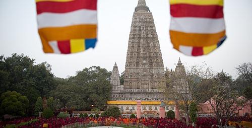 dalailama-bodedaotrang01