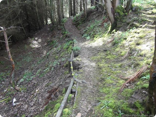 path fallig to bits