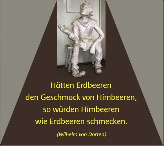 Dorten_Himbeeren