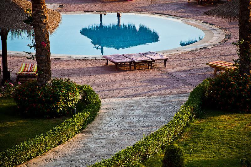 Отель Caribean World Resort Soma Bay. Хургада. Египет. В утихшей глади детского бассейна отражается пальма.