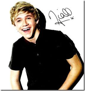 Niall Horan Nandos Black Card