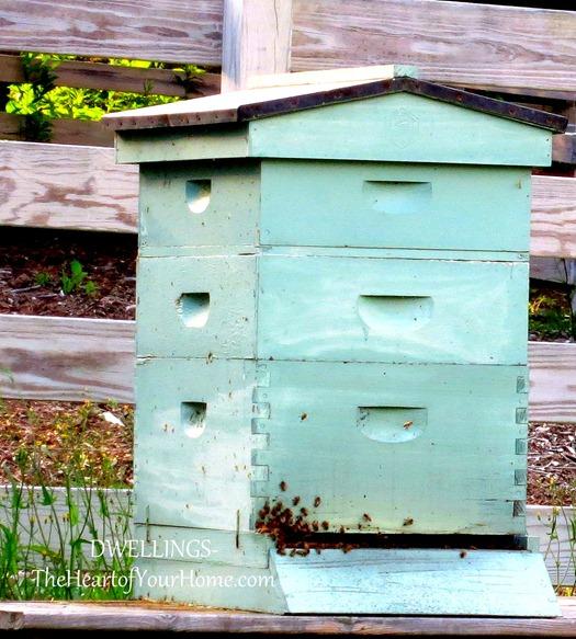 mast farm inn bees 3