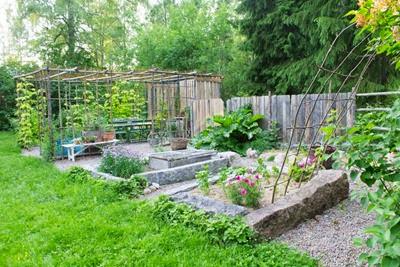Köksträdgård med pergola