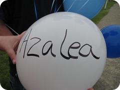 Azalea (Medium)