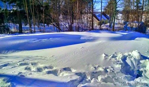 snow drifts 2-16-15