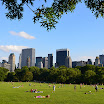 The Great Lawn at Central Park, NYC