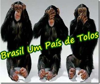 macacos- cego, surdo e mudo