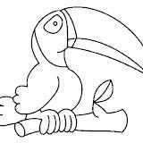 toucan4.jpg