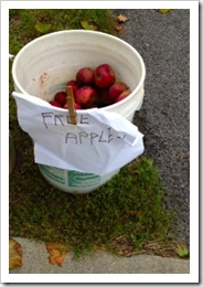 free apples
