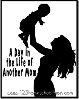 A Day in the Life of Another Mom Series