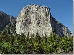 Yosemite Nat Park 178