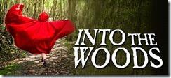 IntoTheWoods-690x310