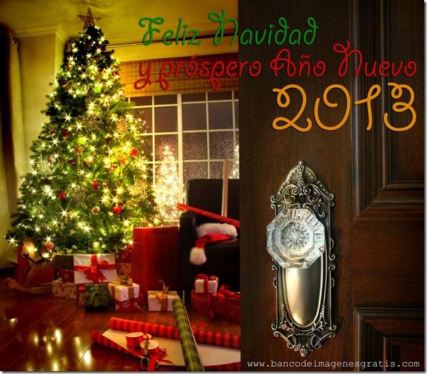 feliz año 2013 (39)