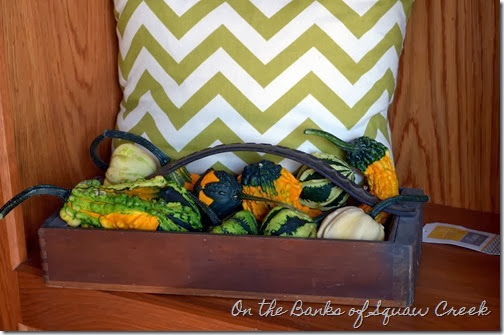 fall gourds & chevron