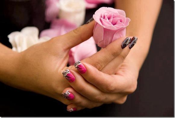 flores-facebook-tumblr-rosas-las flores-fotos de flores-710