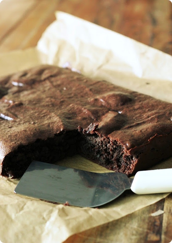Paleo Vegan Chocolate Brownies