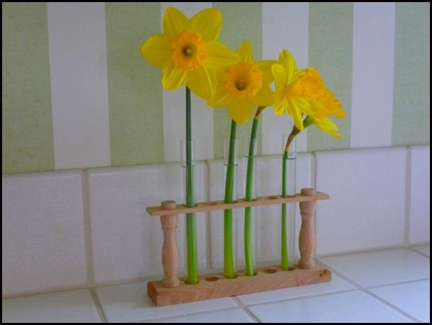 Daffodils 008 (800x600)