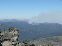 Forest Fire in the wilderness Photo