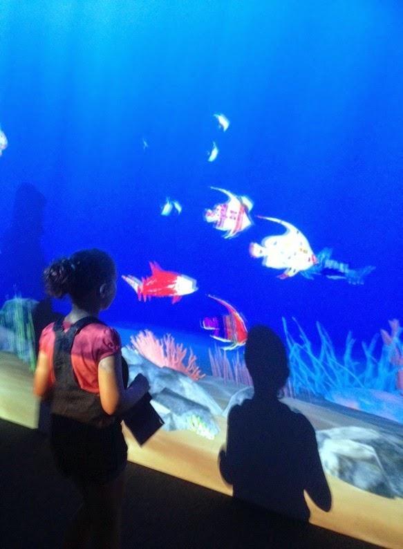 Art Aquarium 1
