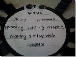 Spider cinquain