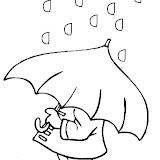 lluvia-17.jpg