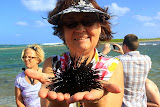 Sue's Keeping A Close Eye On Her Spiky New Friend - Philipsburg, St. Maarten