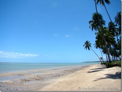 Praia do Patacho Alagoas Brasil Rota Ecologica