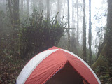 Camping on the lower ridges of Gunung Besar (Daniel Quinn, October 2011)