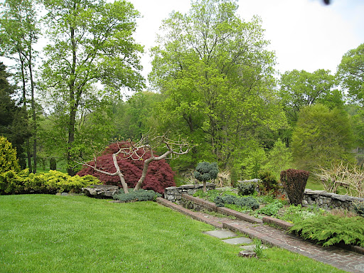 This more formal area of the garden, with its stone steps, paths, and walls, contains many ornamental plants and has lots of areas to explore.
