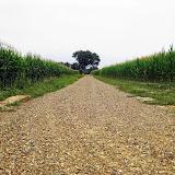 Camino 2010 518.JPG