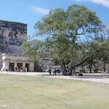 in Chichen Itza, Yucatan, Mexico