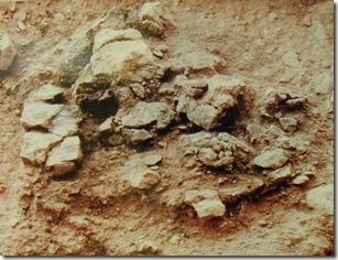 Hoguera de mas de 17000 años de antiguedad de la Ratlla del Bubo