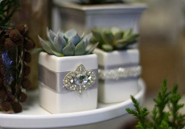 succulents holiday holidaypop-up8 JL Designs_thumb[2]