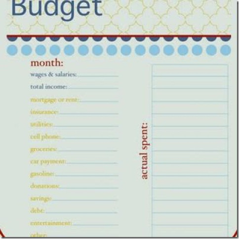 budget-organization