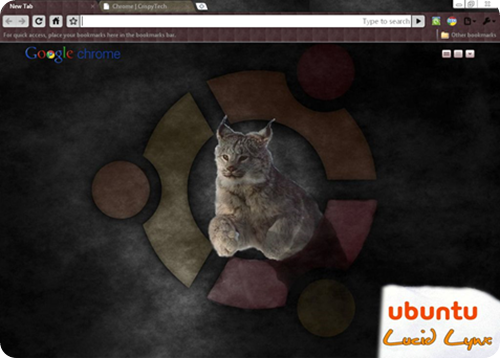 ubuntu_lucid_lynx_google_chrome_theme