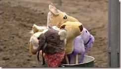 Stick Horses1