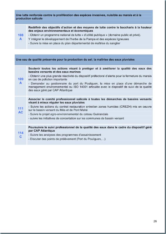 diagnostic_salicole_ca44_2011_page_027